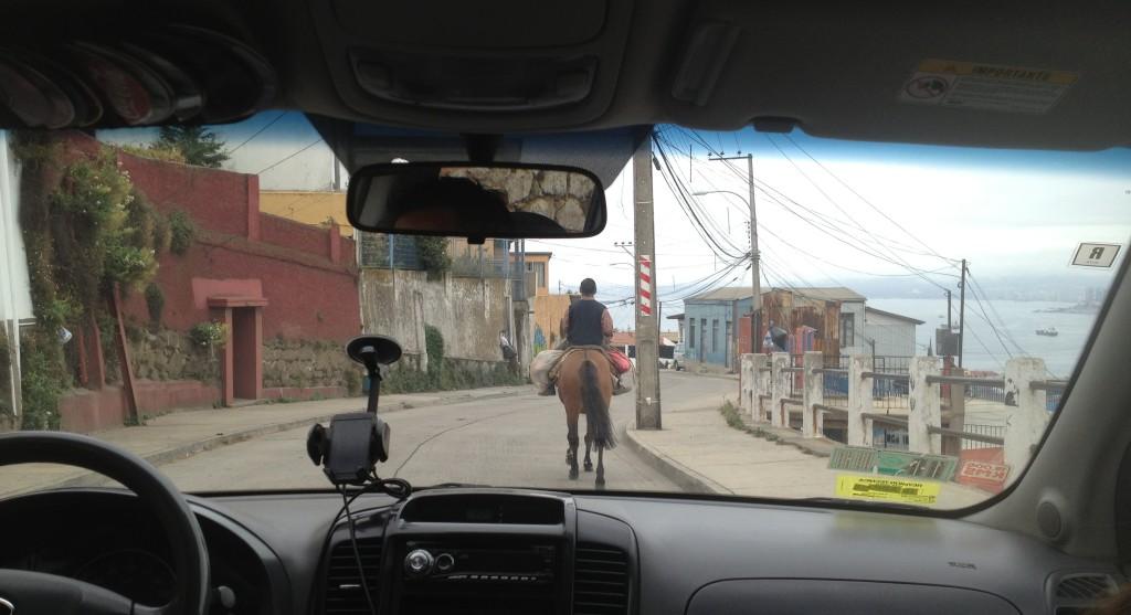 horse valparaiso