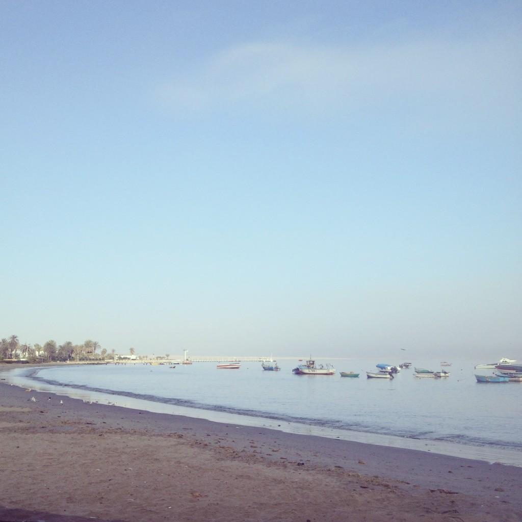 ballestas islands dock