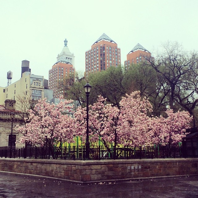 Photo of the Day: Union Square on a Rainy Day