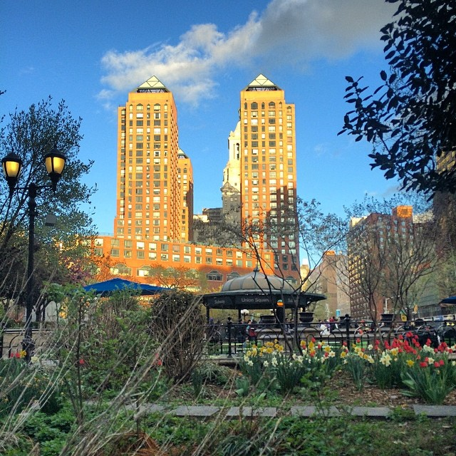Photo of the Day: Union Square Park