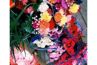 Photo of the Day: Flowers and Chinese New Year Decor