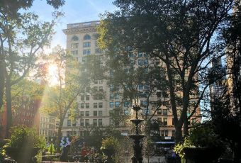 Photo of the Day: Evening Sun at Madison Square Park