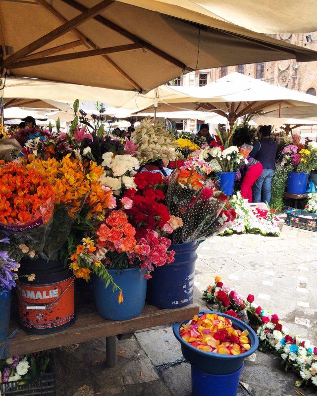 flower market cuenca