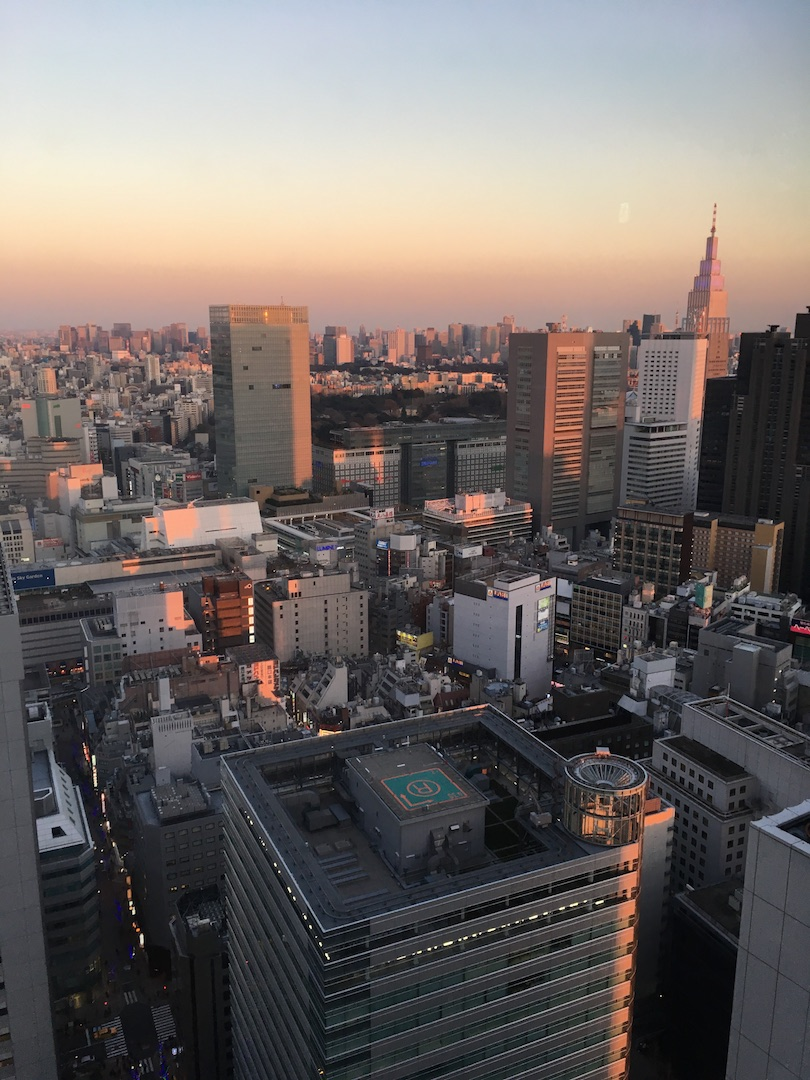 keio plaza hotel view
