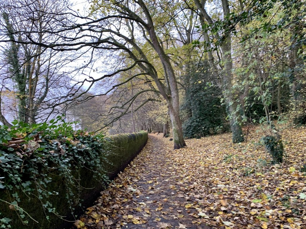 Water of Leith Walkway Edinburgh