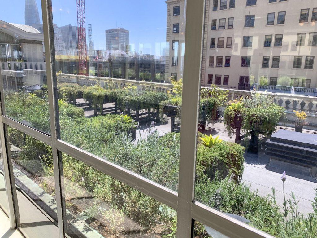 Fairmont San Francisco garden